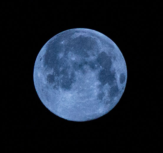 bluemoon_edited-1.jpg